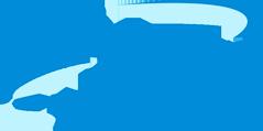 dianna-logo
