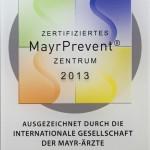 mayr1343